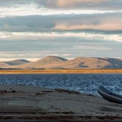 Ученые подвели итоги полевого сезона на острове Самойловский