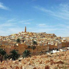 Algeria Press Service (Алжир): Российский бизнес перебирается из Сибири в Сахару