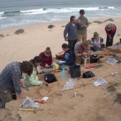 علماء: جنوب أفريقيا نجت من ثورة بركان ضخم دمر أجزاء من العالم في العصر الحجري