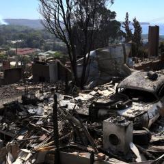 حرائق الغابات تدمر منازل وتقتل الماشية مع فرار الآلاف