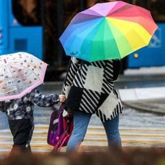 Жителям Москвы в течение рабочей недели понадобятся зонтики