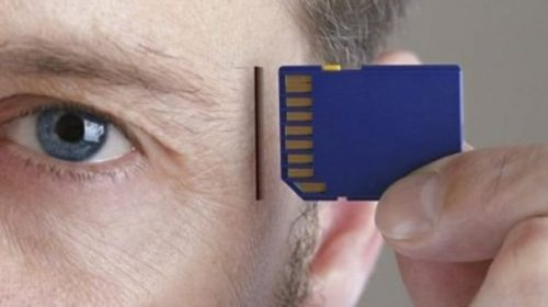 Учёные: Объём человеческой памяти больше общепринятого показателя в 10 раз