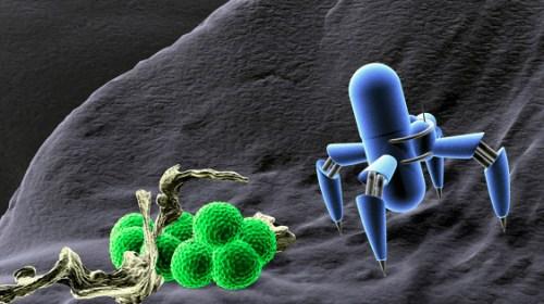 Наноробота научили сортировать молекулы