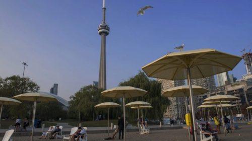 Роботы, беспилотники, модульные дома: в Канаде построят город будущего