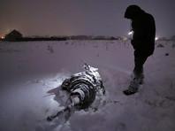 Белый дом выразил соболезнования в связи с катастрофой Ан-148 в Подмосковье