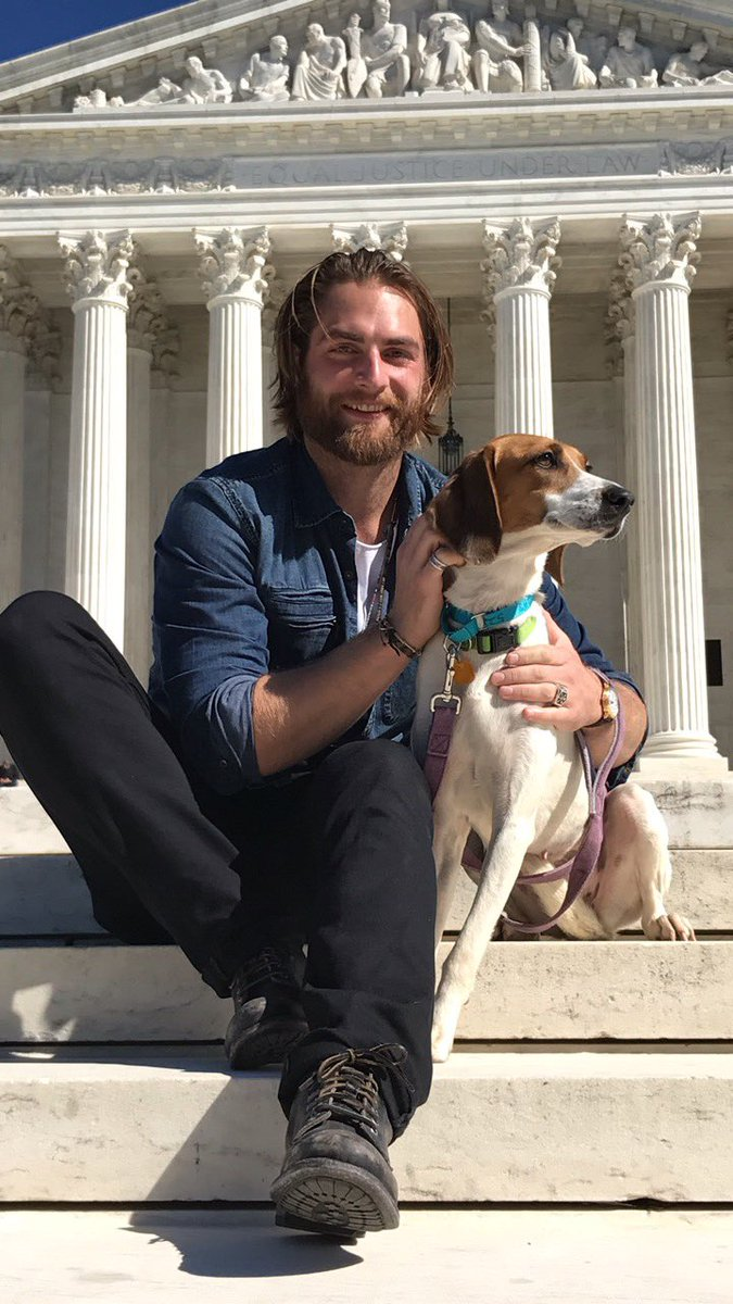 holtby-puppy-2