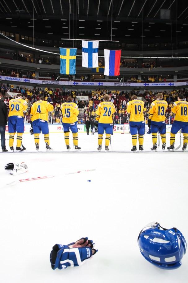 2014 IIHF World Junior Championship