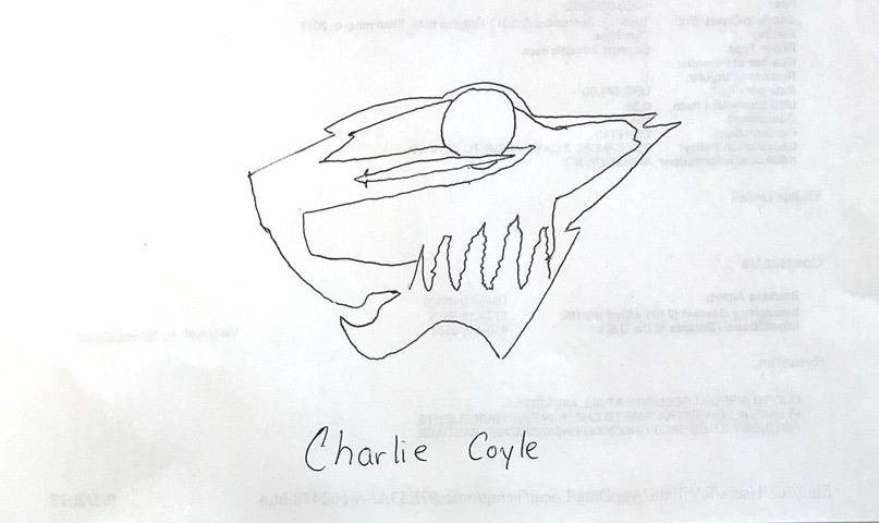 Coyle_wild_drawing