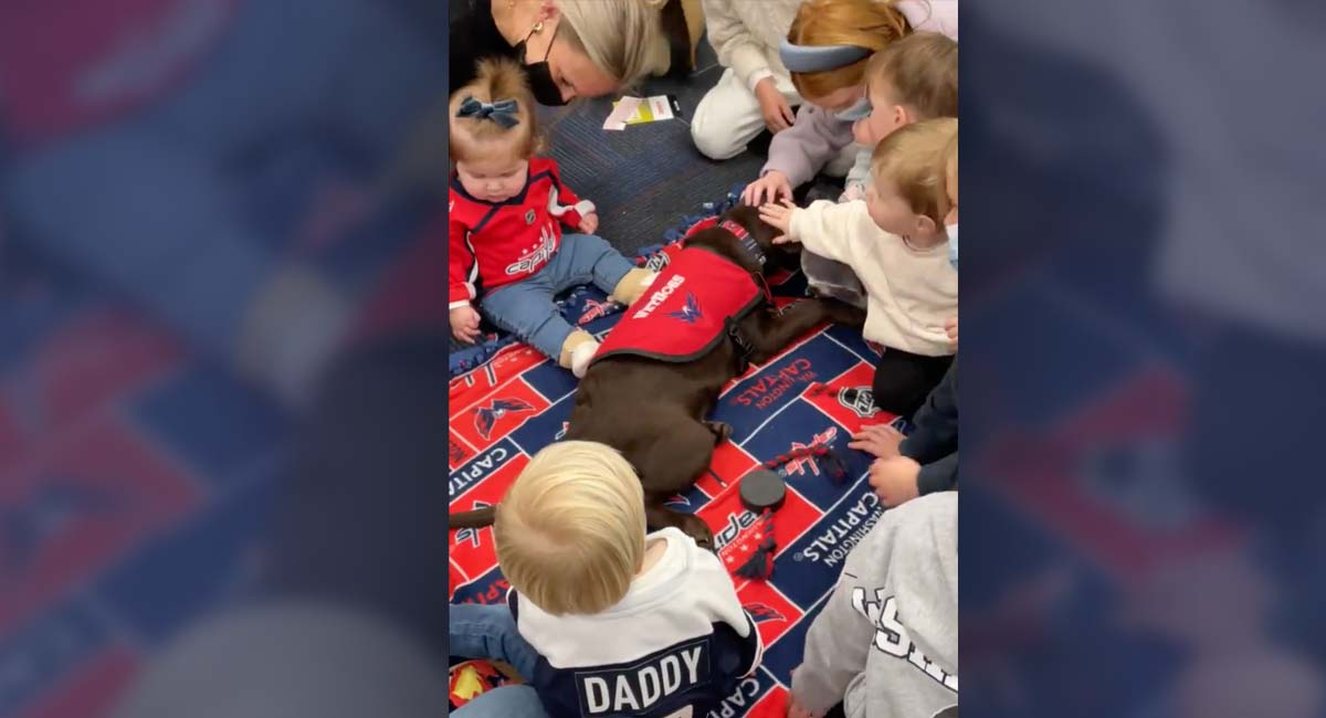 Capitals' kids meet team dog Biscuit for first time