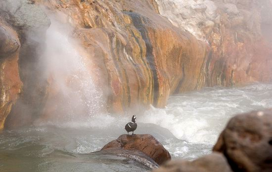 The Valley of Geysers colors, Kamchatka, Russia photo 5