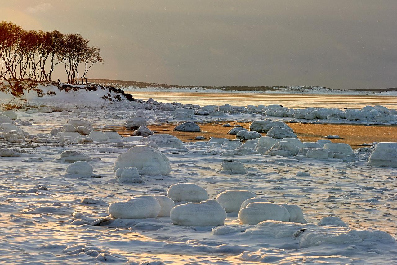 Cold Coast Of The White Sea Near Solovki 183 Russia Travel Blog