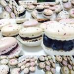 macaron federica russo italia francia cioccolato mandrole tpt