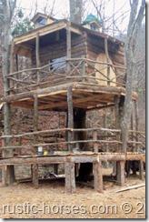 TreeHouse 062