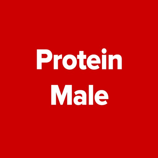 AA Protein | Male - Entire Category