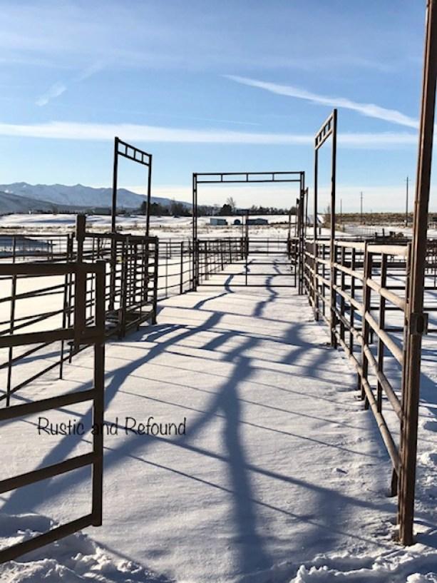 open gate1
