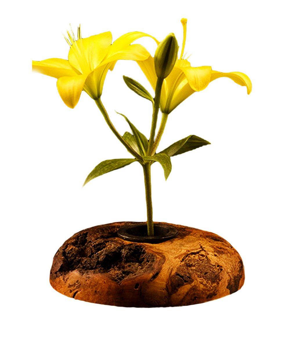 Wood Burl Ikebana Flower Vase  Rustic Artistry