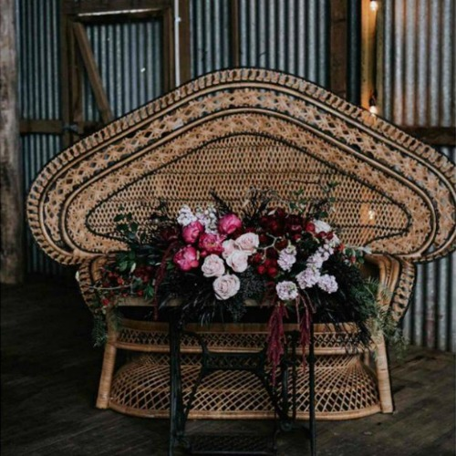 Halle – Double Peacock Chair