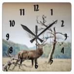 A Deer And A Bluebird Square Wall Clock