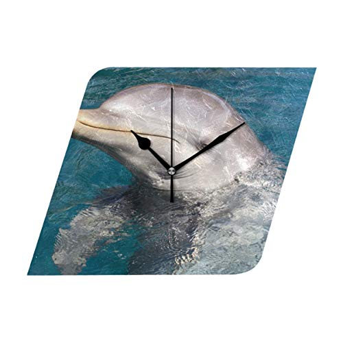 Wall Clock Secret Language of Dolphins Silent Non Ticking Decorative Diamond Digital Clocks Indoor Outdoor Kitchen Bedroom Living Room