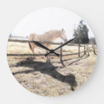 White Horse Standing Outside Outdoors Fence Nature Large Clock