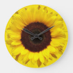 Giant Yellow Garden Sunflower on Yellow Background Large Clock