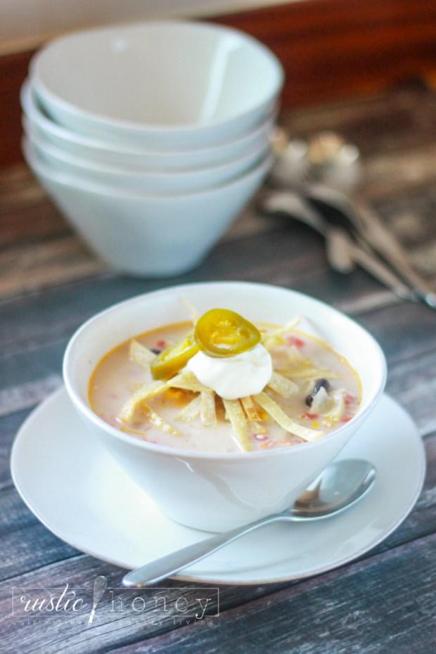 crockpot-chicken-tortilla-soup (2 of 9)