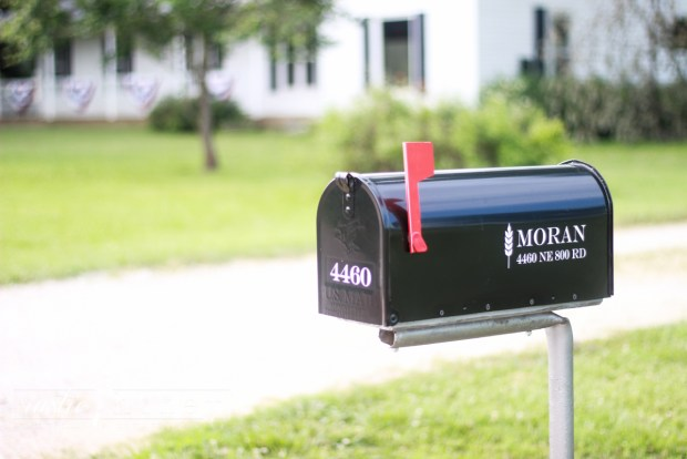 Custom-Mailbox-Free-Silhouette-File (1 of 11)