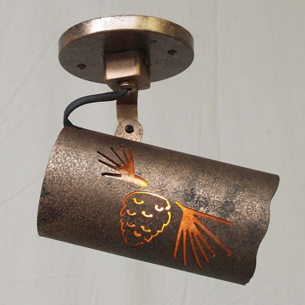 Copper Canyon Lodge and Cabin TR11 Track Lighting