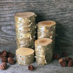 birch log pillars