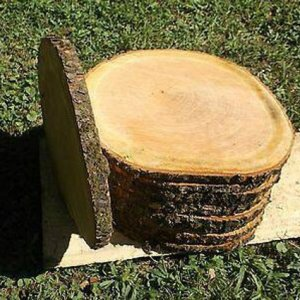 cherry wood slices