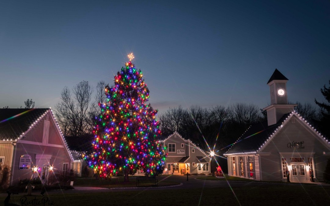 Eight Top Tips for Photographing Christmas Tree Lights
