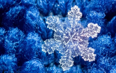 The Easiest Way to Get Quality Snowflake Photos