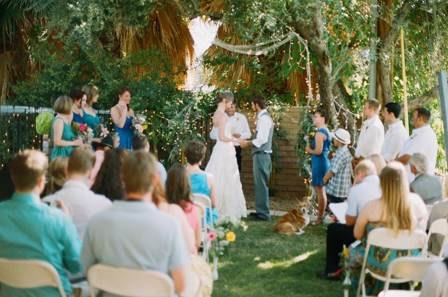 Budget Backyard Wedding