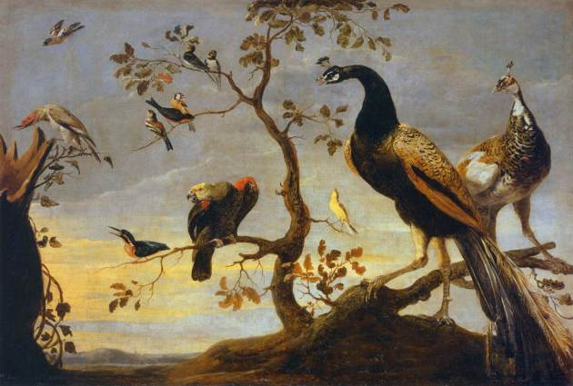 N.D Frans_Snyders_-_Group_of_Birds_Perched_on_Branches
