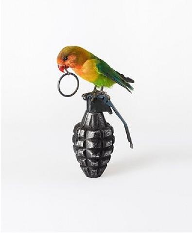 Nancy-Fouts-Brid-on-grenade
