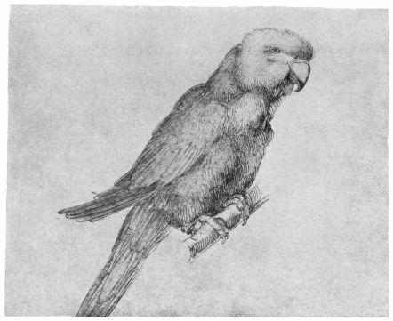 Encre de chine et aquarelle vers 1500