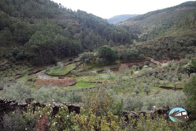 Meandro del Ovejuela