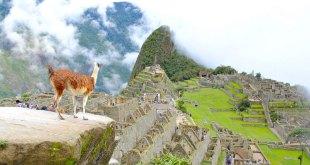 viajar-machupicchu-guia-para-peruanos