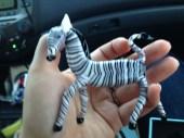 Zebra friend