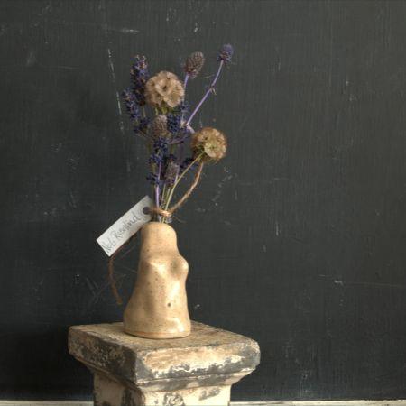 Venus Vase No 6 Rosalind