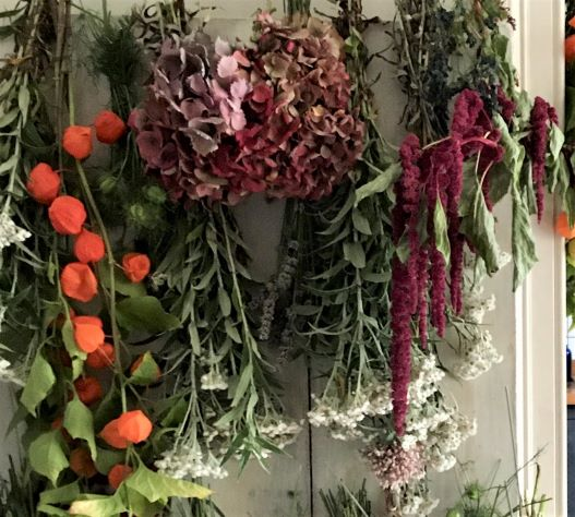 Hanging Flowers Out to Dry – Buy an Arrangement