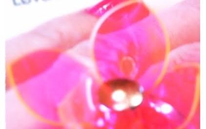 Verdens nydeligste ring