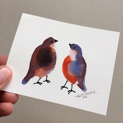 [New] Bird Collection Released!
