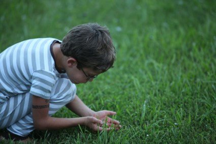 Finding Bugs