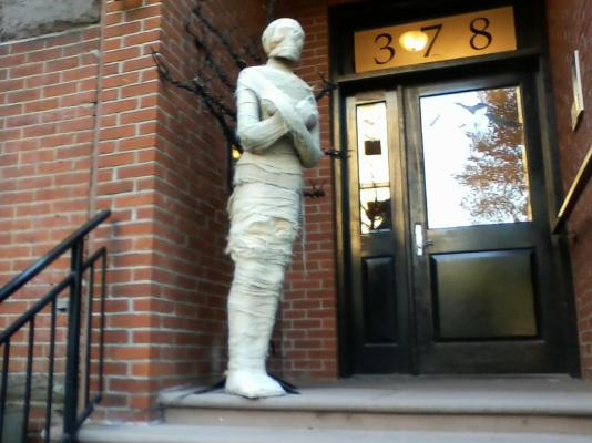 Mummy in Brooklyn by Mary Hendricks