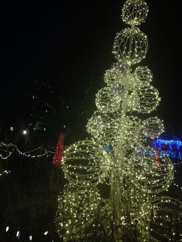 phipps tree