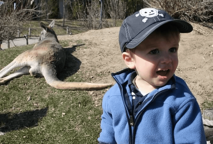 Jack at the Zoo with Kangaroo