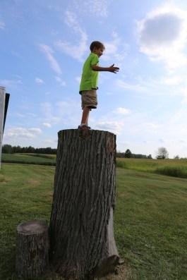 Jack atop stump