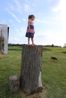 Maura atop stump