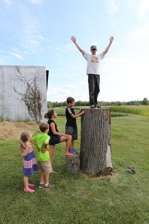 Simon atop stump